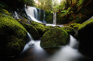 English: Horseshoe Falls in Mt Field National ...