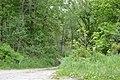 Hugh Laughlin Farm driveway.jpg