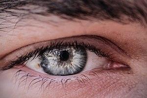 Human eye iris 3.jpg