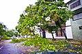 Huracan Karl (5000361432).jpg