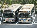 ISUZU ERGA, Yokohama Municipal Buses 3-1577 & 9-1676.jpg