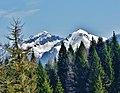 Il massiccio di Cima d'Asta - 2840 m (TN) visto dalla Val Malene - panoramio.jpg