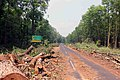 Illegal tree felling at Lataguri.jpg