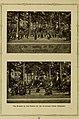 Illustrated bulletin (1917) (14781514461).jpg