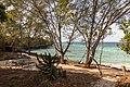 Impressions of Chumbe Island (14).jpg