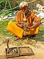 India-5547 - A real charmer - Flickr - archer10 (Dennis).jpg
