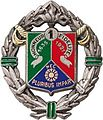 Insigne du 1er REC.jpg