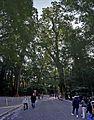 Ise grand shrine Naiku , 伊勢神宮 内宮 - panoramio (26).jpg