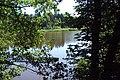 Janovský rybník.jpg