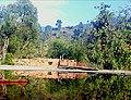 Jantrah Wall in water.jpg
