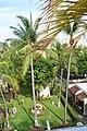 Jardín tropical - panoramio.jpg