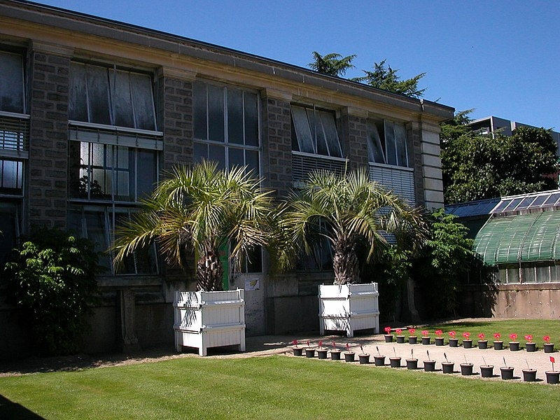 Orangerie du jardin des plantes nantes meilleures id es for Jardin orangerie