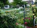 Jardins familiaux Wattrelos J1.JPG