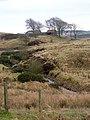 Jawhills - geograph.org.uk - 147295.jpg
