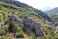 Jelasnica gorge 25.jpg