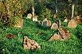 Jewish Cemetery in Lutowiska. Bieszczady Poland - panoramio (12).jpg