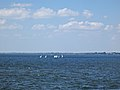 Jezioro Goczałkowickie od strony tamy.jpg