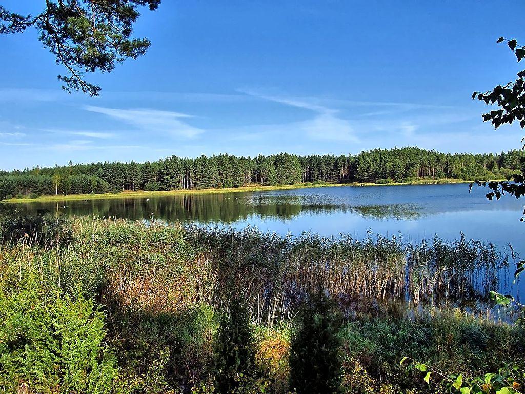 1024px-Jezioro_Szarmachy.jpg