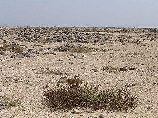 Jiwani Coastal Wetland A wetland located in Balochistan, Pakistan, near the town of Jiwani