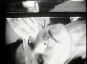 Video art -  A still from Jonas' 1972 video