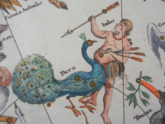 Pavo (constellation) - The constellations Pavo and Indus, featured in the chart of the Southern Celestial Hemisphere by Johann Gabriel Doppelmayr in his Atlas Coelestis, c. 1742