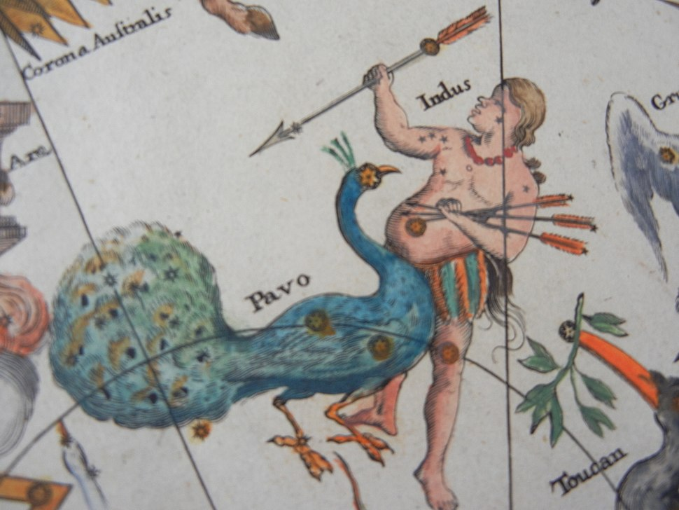 Johan Doppelmayr%27s celestial chart of Pavo and Indus