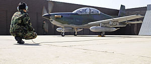 KAI KT-1 Woongbi - KA-1 at Osan Air Base, 2010.