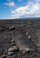 Kalapana Lava Field, Big Island.jpg