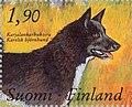 Karelian-Bear-Dog-Canis-lupus-familiaris.jpg