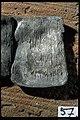 Kat nr 057 Bleck (bly) med runor - KMB - 16000300015763.jpg