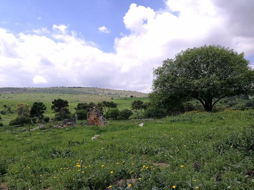 Kedesh General View