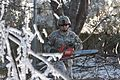 Kentucky National Guardsmen response after heavy ice storms DVIDS148725.jpg