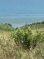 Kepi i Rodonit, Gjiri i Lalezit - Durres. 28.jpg