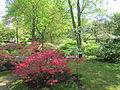 Keukenhof Garden (49).JPG
