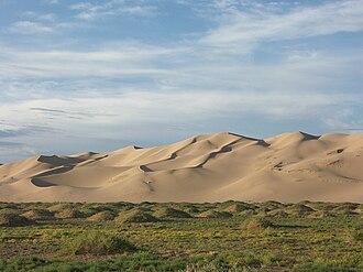 Gobi Desert - The sand dunes of Khongoryn Els, Gurvansaikhan NP, Mongolia