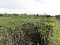 Kilgavanagh Townland - geograph.org.uk - 1556718.jpg