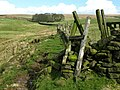 Kirk Hill - geograph.org.uk - 1209400.jpg
