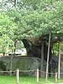 Kirschbaum und grosser Stein 1.JPG