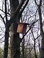 Kis-Sváb Hill Protection Area. Bird table. - Budapest.JPG