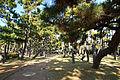 Kobe Maiko Park14s3.jpg