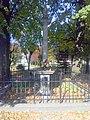 Kolumna Jana Kazimierza z XVII w., kamienna z barokowym posążkiem Jezusa Frasobliwego, dwukrotnie odnowiona (1807, 1959) - panoramio (1).jpg
