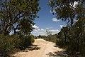 Ku-Ring-Gai Chase NSW 2084, Australia - panoramio (5).jpg