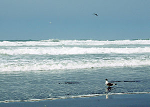 Arequipa Region - Beaches of La Punta de Bombon
