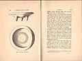 La Nécropole Punique de Douïmès (a Carthage) fouilles de 1895 et 1896 63.jpg