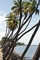 Lahaina Beachfront (4187165992).jpg