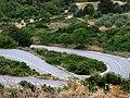 Lahania - panoramio.jpg