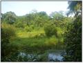 Landscape park.PNG