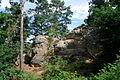 Landschaftsschutzgebiet Harz und Vorländer - Teufelsmauer bei Timmenrode (13).JPG