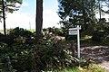 Lane to Muir of Logie Farm. - geograph.org.uk - 250037.jpg