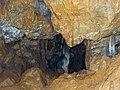 Le trou du loup Sentheim (Wolfloch) - panoramio.jpg